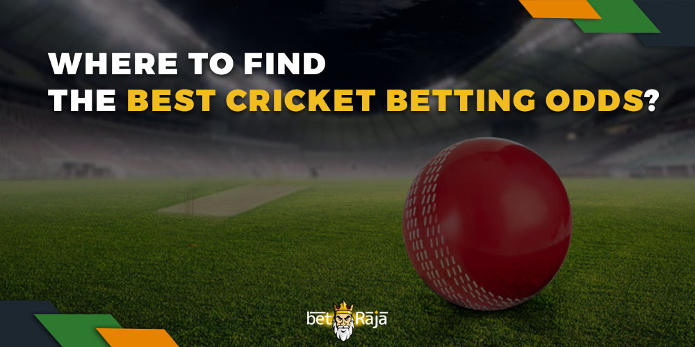 Where do we find the best cricket betting odds
