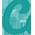 casumo small logo